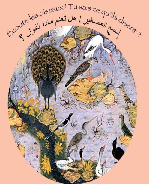 Ecoute les oiseaux
